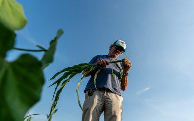 BioTour by Agricola Grains, una vetrina che apre alla conversione al sistema biologico.
