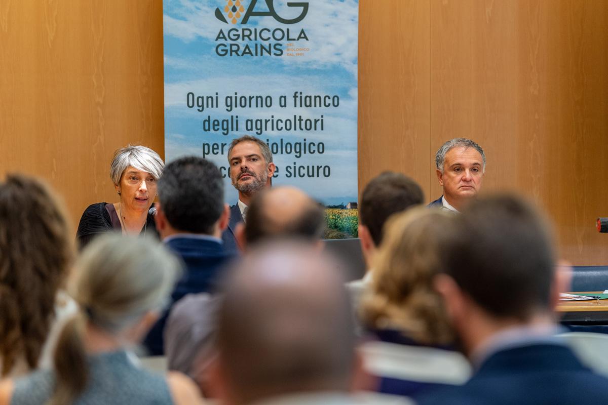 filiera italiana girasole bio (5)