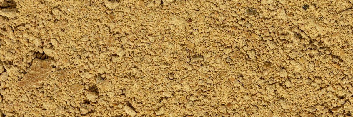 panello-di-soia-biologico